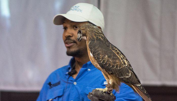 12-Eagle-PS