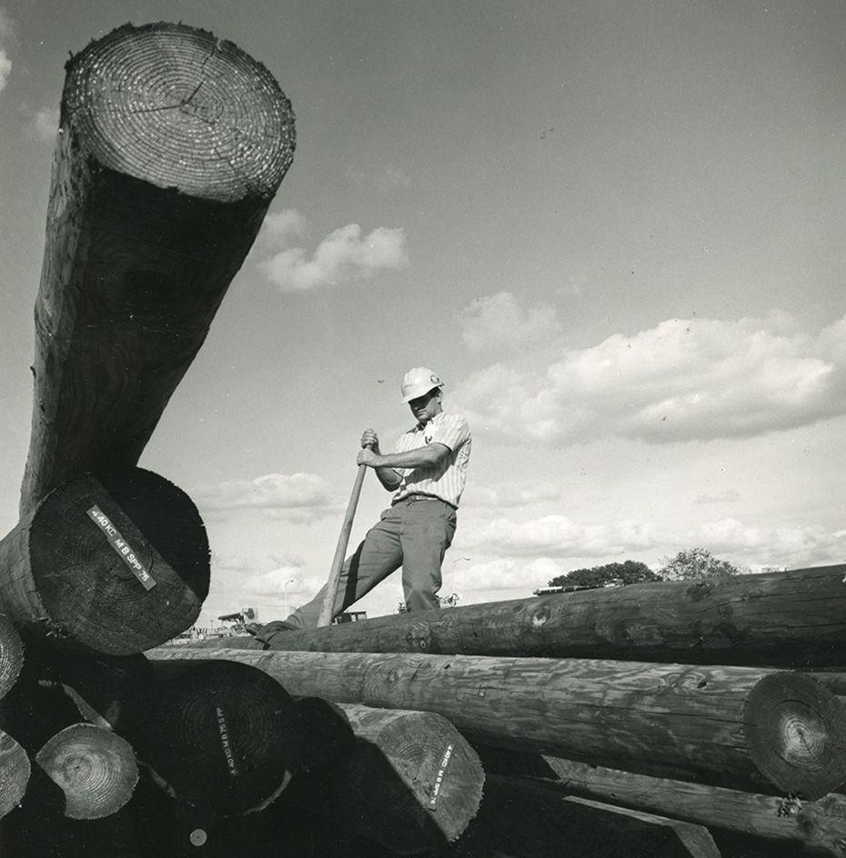 Lumber 33