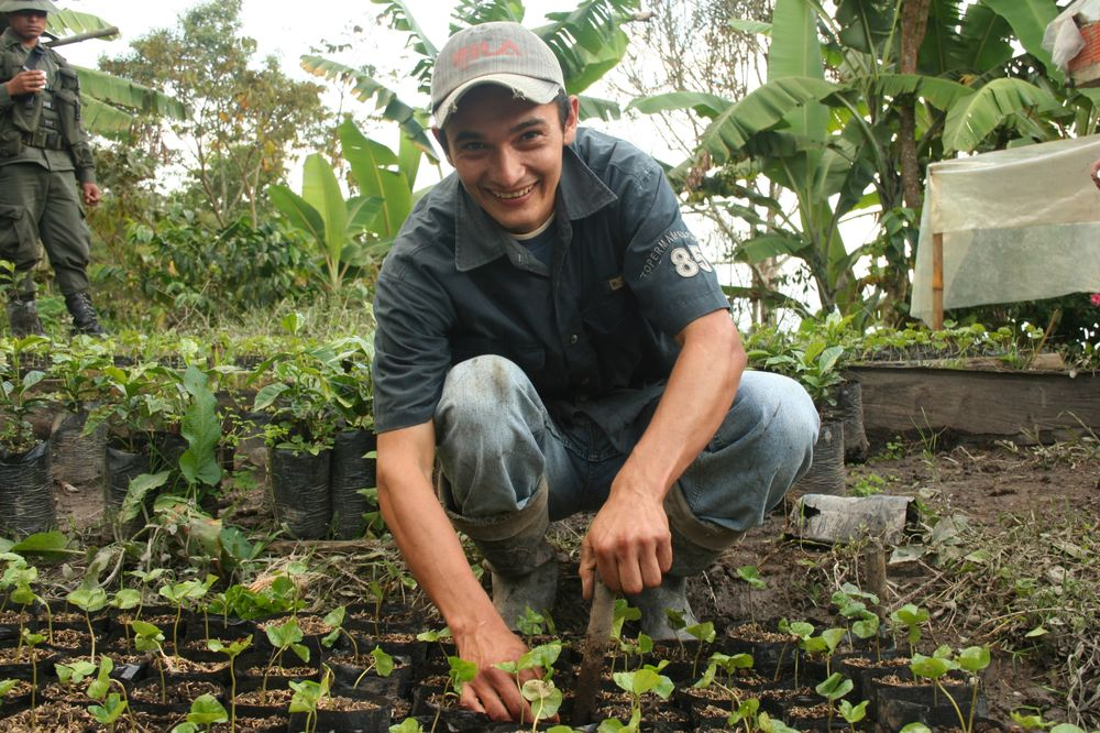 Rainforest Alliance Certification: Making a Difference For Coffee Farmers Worldwide