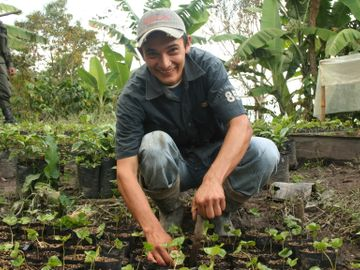 coffee-nursery-colombia