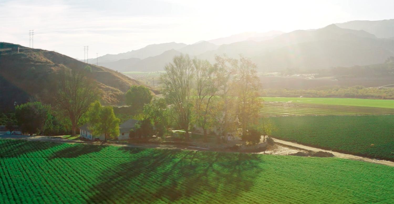 Southern California Edison   Creating a Clean Energy Future