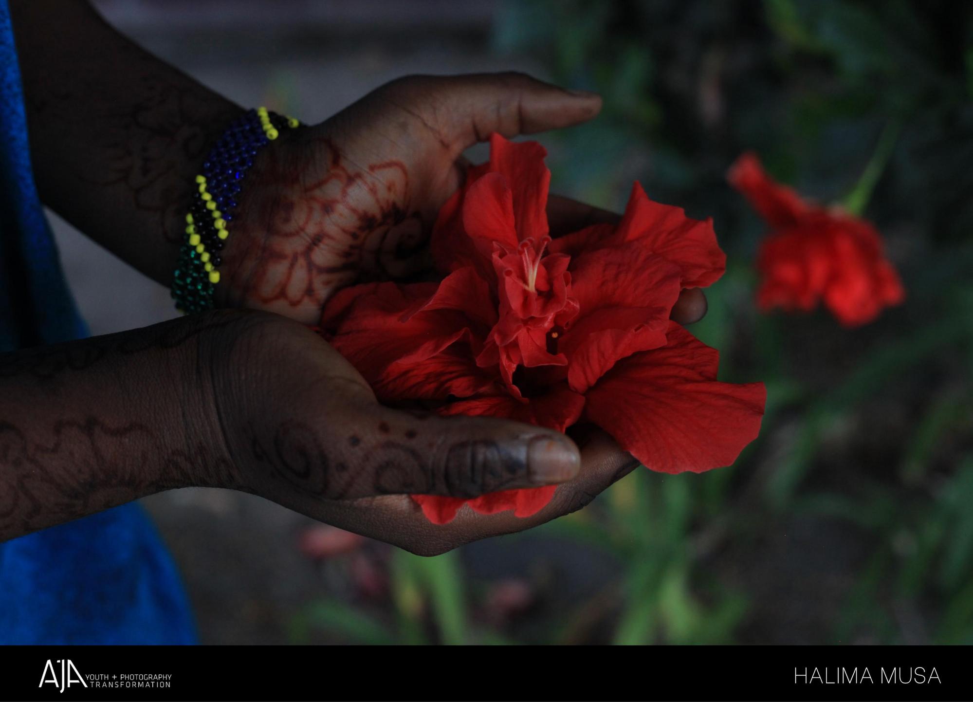 Halima.flower