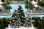 Tropical Christmas by Chad H