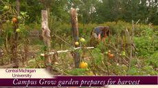 Campus Grow garden