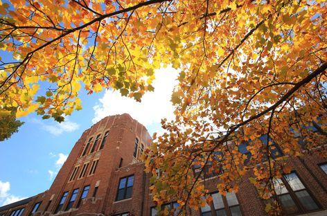 CMU Campus Scenics Fall 2013