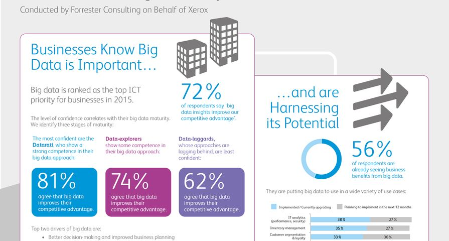 Infographic: The Path to Big Data Success