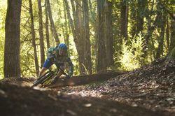 Bell Mountain Biker